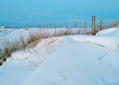 Sneeuw Duinen bij Petten