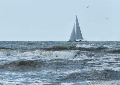 Zeilboot aan de kust van Petten